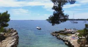 vijay mallya island Sainte- Marguerite