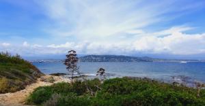vijay mallya island Sainte- Marguerite picture