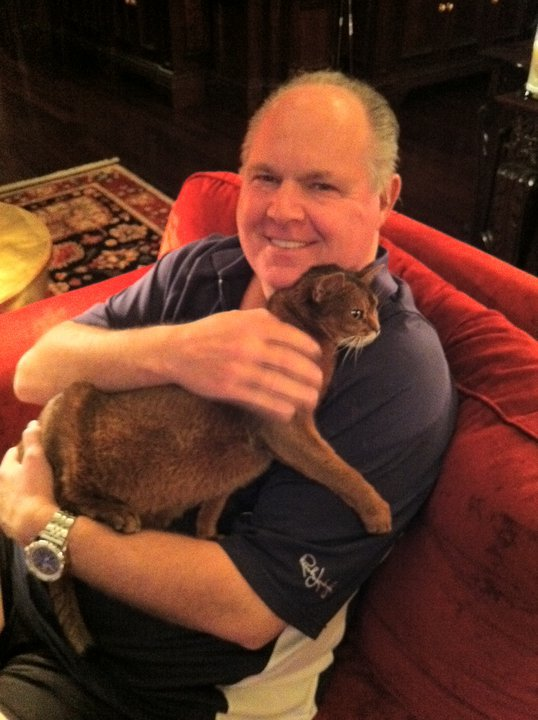 Not Just Rich!