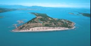 craig mccaw james island